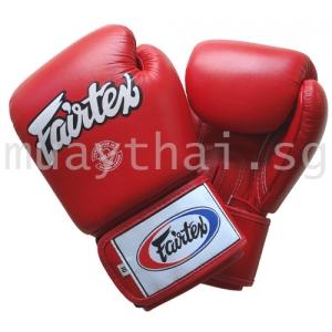 Fairtex Muay Thai Gloves | The Muay Thai Shop Singapore
